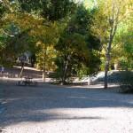 Fall 2010-11
