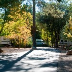 Fall 2010-8