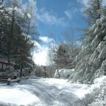 Snow-21