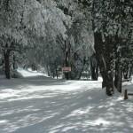 Snow-48
